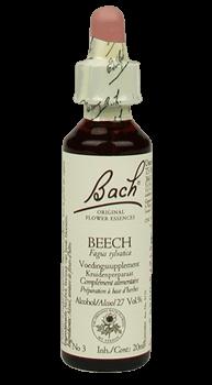 Bachbloesem Beech Slow Living Animals