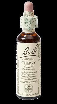 Bachbloesem Cherry Plum Flesje