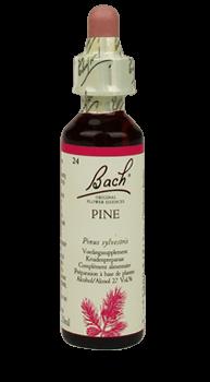 Bachbloesem Pine Slow Living Animals