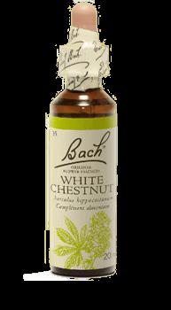 Bachbloesem White Chestnut Slow Living Animals