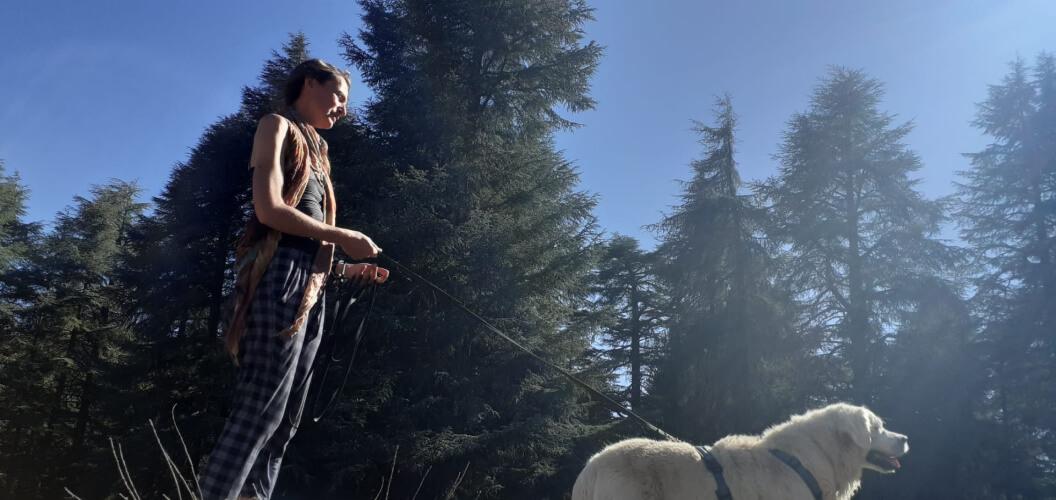Slow-walk-met-je-hond-tijdens-corona
